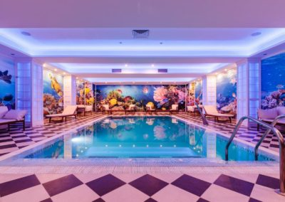 Hotel Sofianu - piscina
